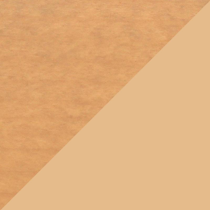 Épicéa 550 / RAL 1001