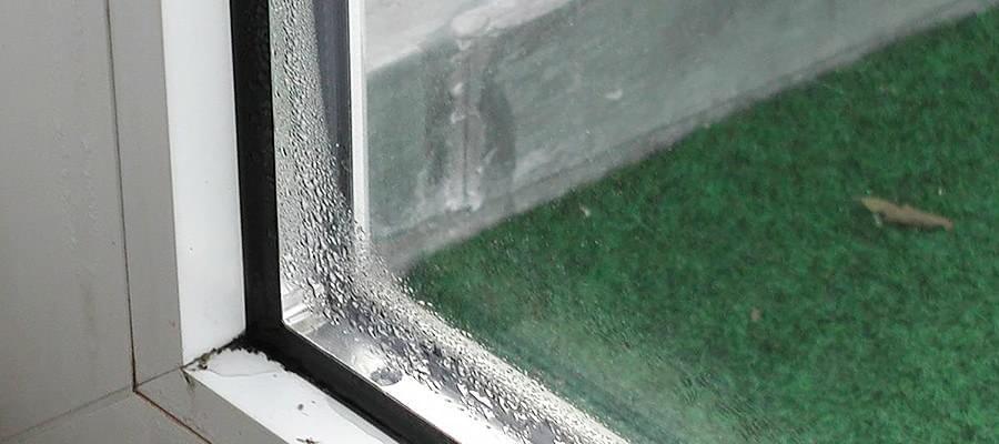 Moisissure Fenêtre La Fenêtre A Moisi Que Faire