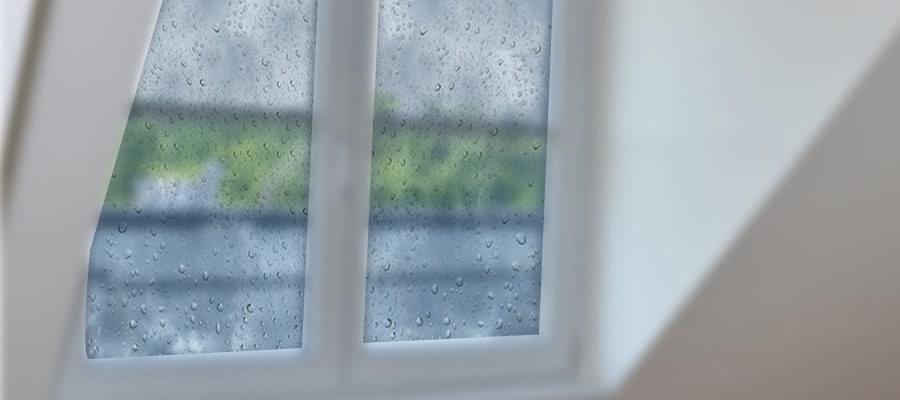 Humidité Fenêtre Comment éviter Les Moisissures